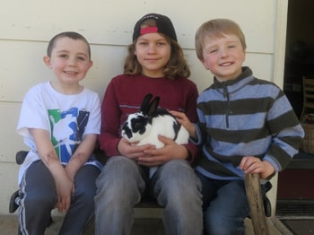 boys with rabbit