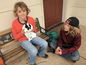 boys with bunny